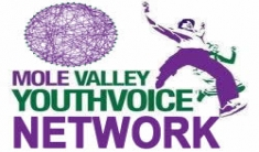 Youth Voice Network