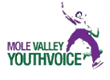 Mole Valley Youth Voice